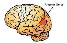 giro angular