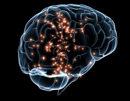 formas de mantener sano tu cerebro