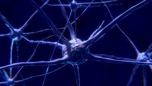 neurofeedback síndrome tourette