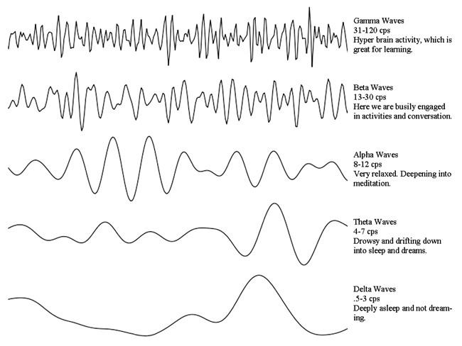 Que mapeo con para sirve cerebral electroencefalograma el